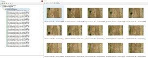 photoscan corso online