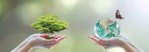procedure ambientali corso di formazione